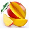 Wholesale African mango supplement