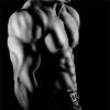 Bodybuilding supplements trade supplier