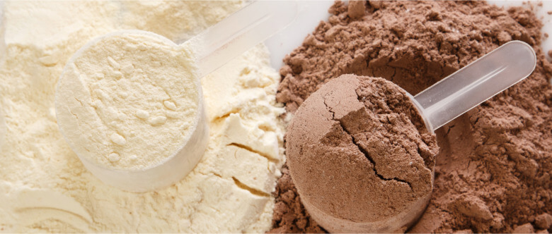 Wholesale protein powders